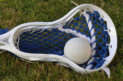 Lacrosse Head and Ball royalty free stock images