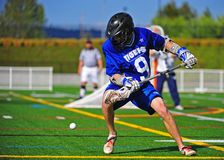 Lacrosse loose ball Royalty Free Stock Image
