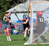 Lacrosse ontsproten SL Royalty-vrije Stock Foto