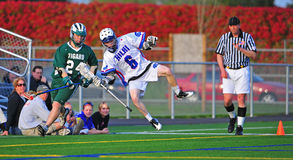 Lacrosse Player knocked out of bounds royalty free stock images