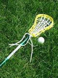 Lacrosse Stick and Ball. Women's lacrosse stick and ball in a grassy field royalty free stock photo