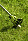 Lacrosse Stick in the Grass. A green striped lacrosse stick and ball in the grass stock image