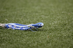 Lacrosse Turf. The head of a girl's lacrosse stick on artificial turf Stock Photography