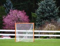 Lacrossefußball Ziel Stockbild