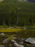 Lacs consolation dans Banff Photo libre de droits