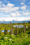 Lacs et Mountians peninsula de l'Alaska - de Kenai Photographie stock libre de droits