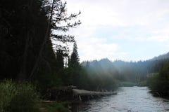 Lacs gigantesques photo libre de droits