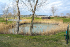 Lacs golf Images stock