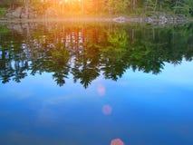 Lacs Muskoka, nature d'Ontario photo libre de droits