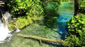 Lacs Plitvice image stock