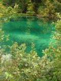 Lacs Plitvice de parc national, Croatie Photos stock