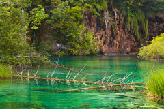 Lacs Plitvice en Croatie Images libres de droits