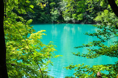 Lacs Plitvice en Croatie Photo libre de droits