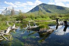 Lacs vermeils Photos libres de droits