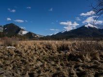 Lacs vermeils en parc national de Banff, Alberta, Canada Photos libres de droits