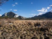 Lacs vermeils en parc national de Banff, Alberta, Canada Image stock