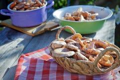 Lactarius de champignons sur la table Image libre de droits
