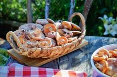 Lactarius deliciosus in a basket Royalty Free Stock Image