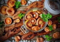 Lactarius posto de conserva dos cogumelos em um frasco de vidro Foto de Stock
