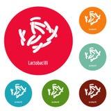 Lactobacilli icons circle set vector. Isolated on white background Royalty Free Stock Photography