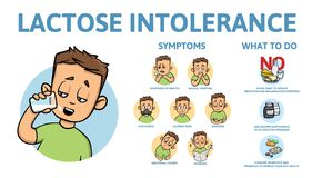 Lactose intolerance symptoms and treatment. Infographic poster with text and character. Flat vector illustration vector illustration