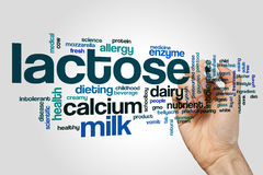 Lactose word cloud. Concept on grey background Stock Image