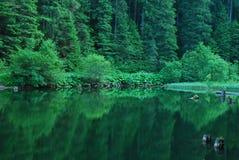 Lacul Rosu Στοκ Εικόνες