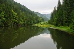 Lacul Rosu il lago rosso, Carpathians orientali Immagine Stock Libera da Diritti