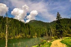 Lacul Rosu, lago da montanha na floresta profunda fotos de stock