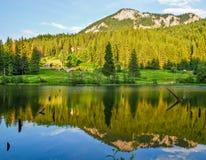 Lacul Rosu. Shot taken in Lacul Rosu, Romania, Europe Royalty Free Stock Image