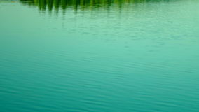 Lacustrine Landscape.Green Forest Reflections On Rippling Lake Waters,Tilt stock video footage