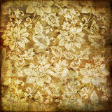Lacy  background Stock Photography