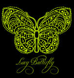 Lacy butterfly Stock Photos
