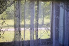 Lacy curtains on home window looking out to green space. View of open green space with trees and road. Looking out through lace panel windows. Traditional royalty free stock images