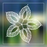 Lacy Flower estilizado ilustración del vector