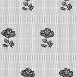 Lacy flower seamless pattern. Royalty Free Stock Photos