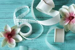 Lacy ribbon and flowers on a light green. Background Royalty Free Stock Photos