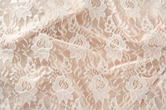 lacy satin Obraz Stock