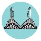 Lacy sexy vector bra. Royalty Free Stock Photo