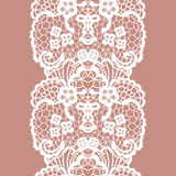 Lacy vintage trim. Royalty Free Stock Images