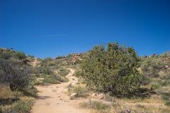 Ślad przez Mojave wzgórzy Zdjęcia Royalty Free