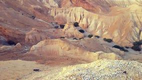 Ślad w pustyni Zdjęcia Royalty Free