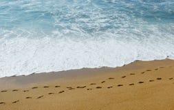 Ślada na piasku Zdjęcie Royalty Free