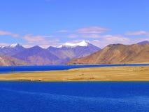 ladakh湖pangong 库存照片
