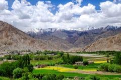 Ladakh, Ινδία Στοκ φωτογραφία με δικαίωμα ελεύθερης χρήσης