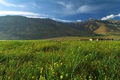 ladakh около долины городка padum Стоковая Фотография RF