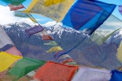 Ladakh Indien Royaltyfri Foto