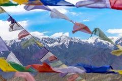 Ladakh Indien Royaltyfri Bild