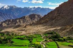 Ladakh Indien Fotografering för Bildbyråer