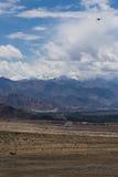 Ladakh landskap; kargt ökenterräng av Ladakh Fotografering för Bildbyråer